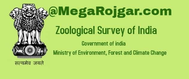 Zoological Survey Of India Recruitment